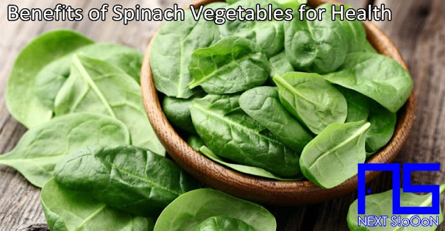 Spinach Vegetables, What Is Spinach Vegetables, Understanding Spinach Vegetables, Explanation of Spinach Vegetables, Benefits of Spinach Vegetables for Health, Benefits of Spinach Vegetables for the Body, Nutrition of Spinach Vegetables, Vitamins for Spinach Vegetables, Vitamins and Spinach Vegetables Nutrition for Body Health, Get a Healthy Body with Spinach Vegetables, Information about Spinach Vegetables, Complete Info about Spinach Vegetables, Information About Spinach Vegetables, How the Nutrition of Vitamin Spinach Vegetables is, What are the Benefits of Spinach Vegetables for the Body, What are the Benefits of Spinach Vegetables for Health, the Benefits of Spinach Vegetables for Humans, the Nutrition Content of Spinach Vegetables provides many benefits for body health.