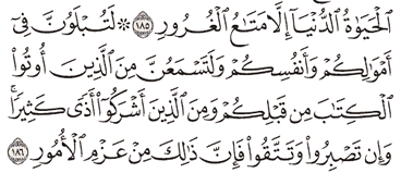 Tafsir Surat Ali Imron Ayat 186, 187, 188, 189, 190