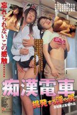 Chikan Densha: Chôhatsusuru Midara Shiri 2005
