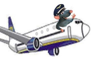 Topo terrorizza i passeggeri e dirotta a Singapore l'aereo diretto a Nuova Delhi