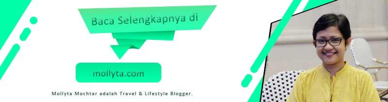 travel blogger medan