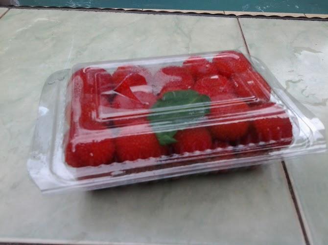 Warna  dan Kandungan Zat Gizi yang Terkandung di dalam Buah dan Sayur