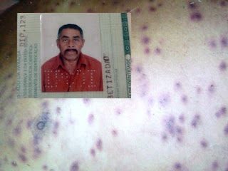Idoso morre ao ser atacado por enxame de abelhas em sítio na Paraíba