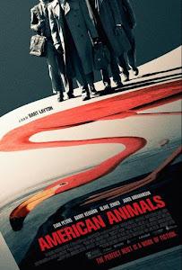 American Animals (Animales Americanos)