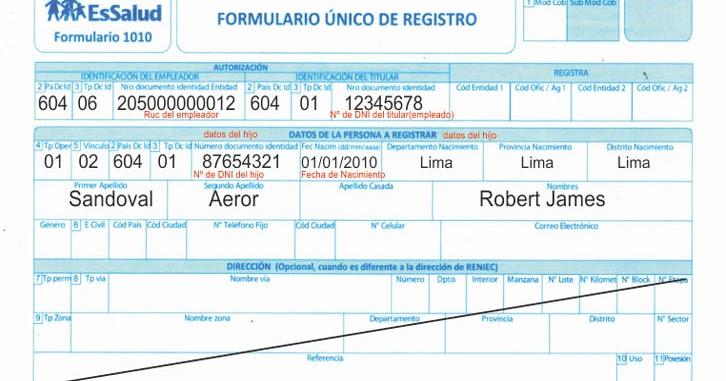 essalud formulario 1010