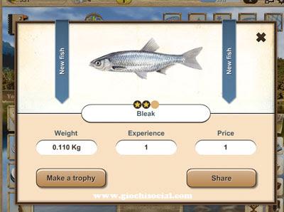 Pescare su Facebook