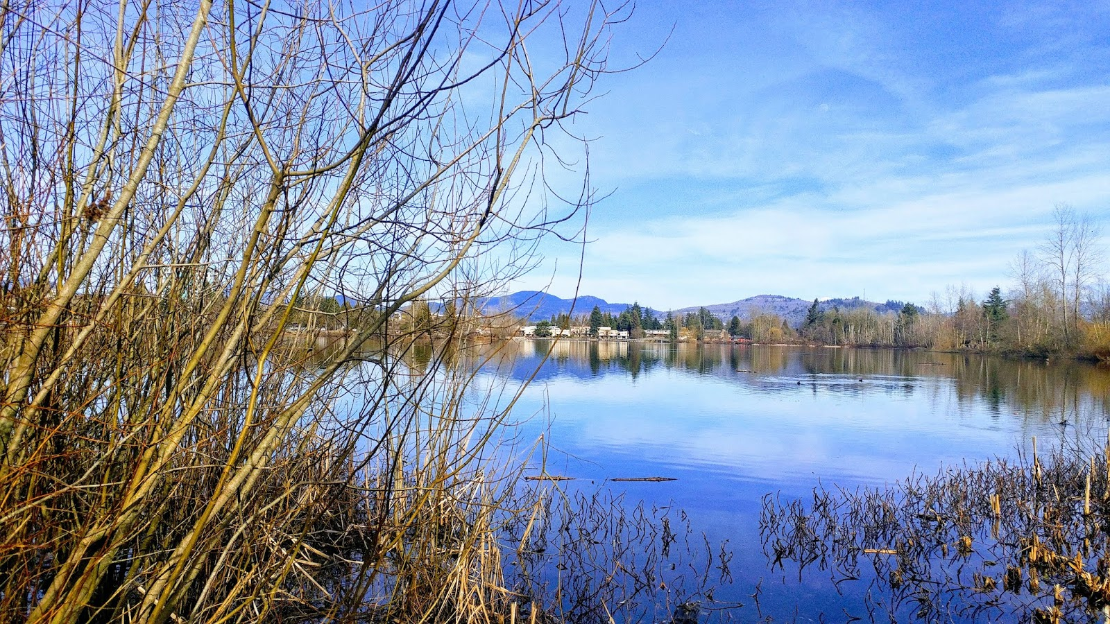 The Lake at Mill Lake Park, Abbotsford BC