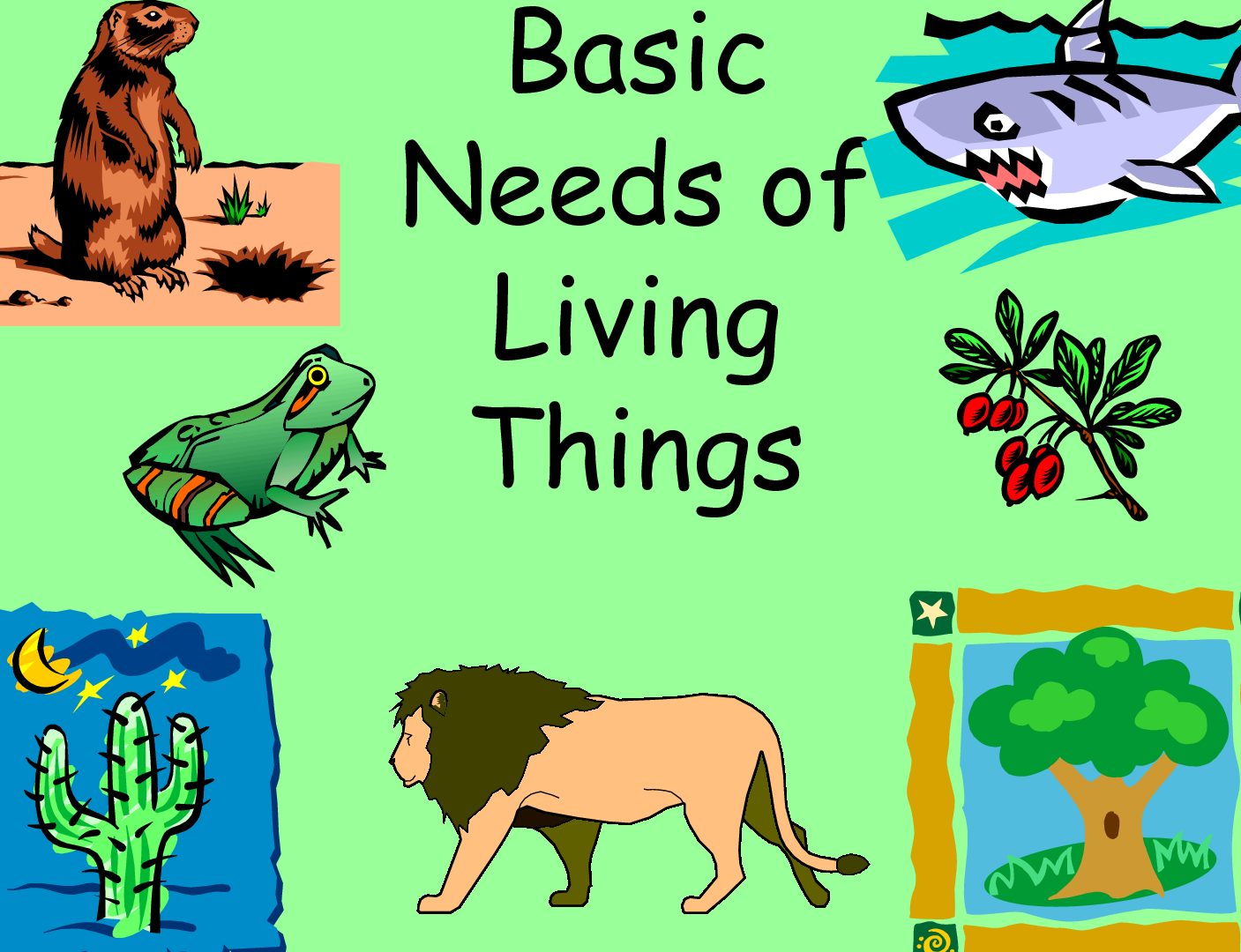 Lesson Plan Of Needs Of Living Things Air Water Food