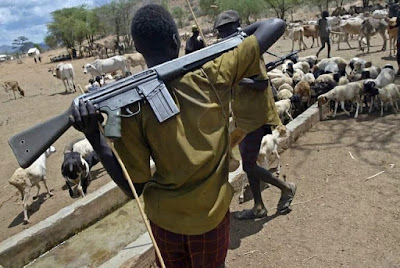 Boko Haram terrorists disguising as herdsmen to kill – IYC