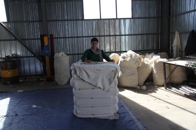 Tadjikistan, Yavan, coton, ECOM, © L. Gigout, 2012