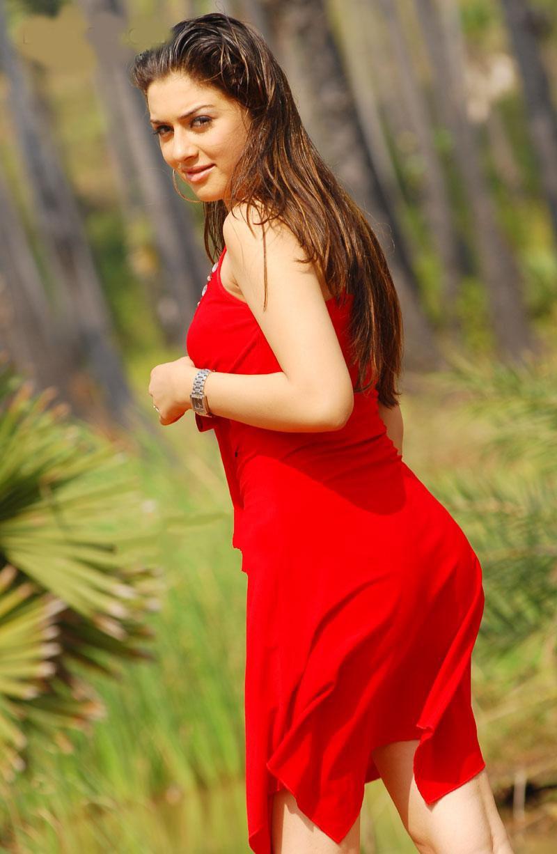 Hot Indian Actresses Hansika Motwani Super Hot-1871