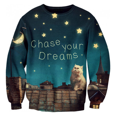 http://cuteharajuku.storenvy.com/products/15700287-chase-your-dreams-star-moon-cat-sweatshirt