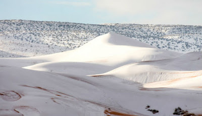 Salju di gurun salju