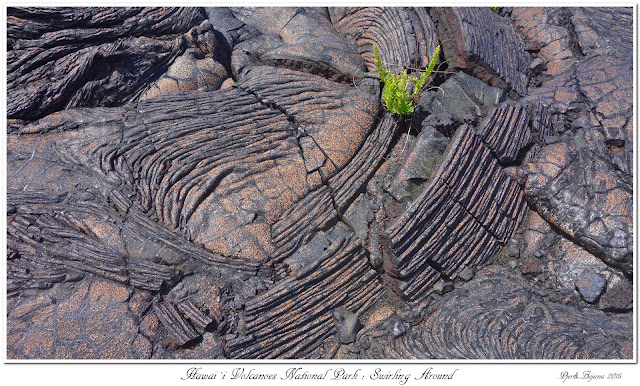 Hawai'i Volcanoes National Park: Swirling Around