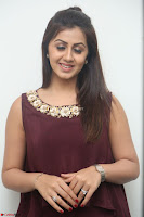 Nikki Galrani in a Brown Shining Sleeveless Gown at Nakshatram music launch ~  Exclusive 082.JPG
