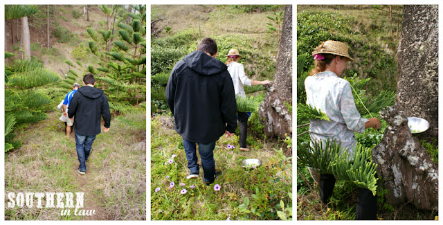 Foraging for watercress at Bloody Bridge Norfolk Island with Rachel Nebauer