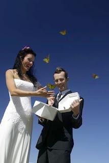 Cozumel butterfly release