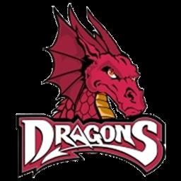 Kumpulan logo dream league soccer