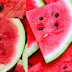 Watermelon Fruit a rich food in carbohydrates