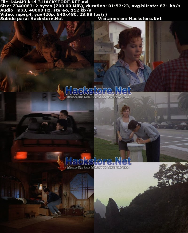 Captura Karate Kid 3 (1989) DVDRip Latino