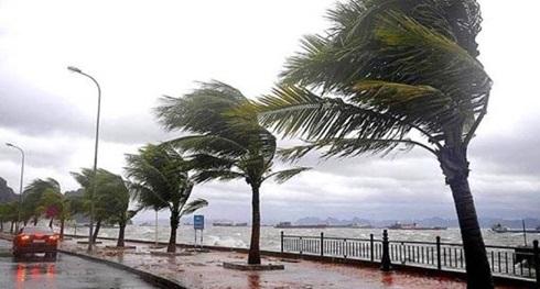 الارصاد الجوية,الأرصاد الجوية,حالة الطقس,الأرصاد,الارصاد الجوية اليوم,الطقس,حالة الطقس اليوم,السيسي,هيئة الأرصاد الجوية,درجات الحرارة,الأرصاد الجوية في مصر اليوم,الأرصاد الجوية في مصر,الأرصاد الجويه غدا,الأرصاد اليوم,الارصاد,الطقس اليوم