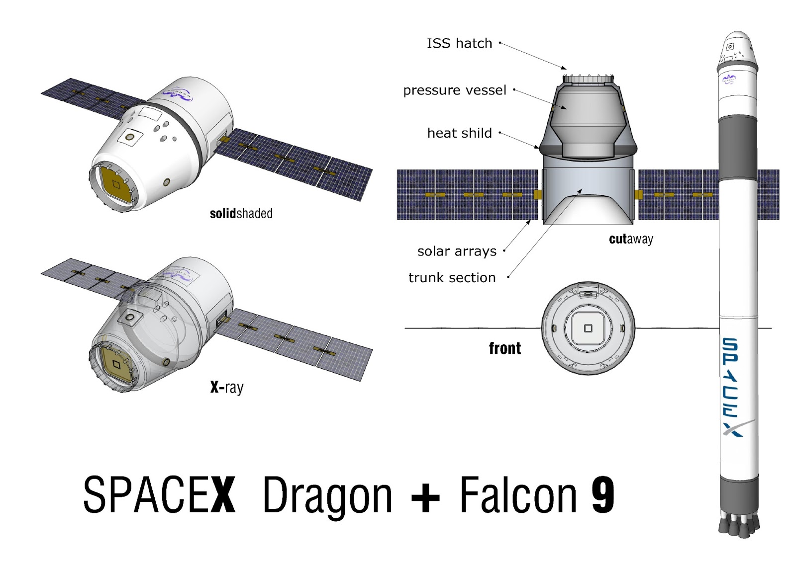 SpaceX Dragon Capsule Model - Pics about space