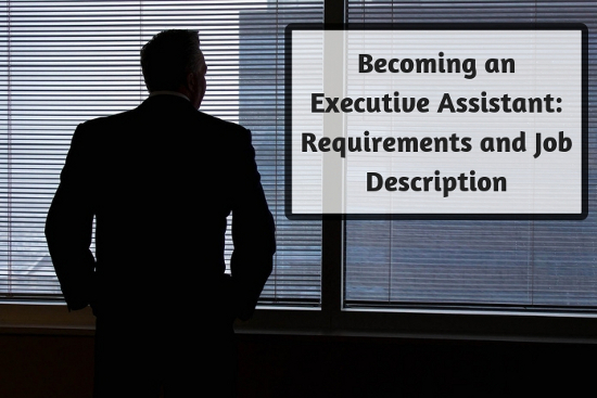 Becoming an Executive Assistant: Requirements and Job Description
