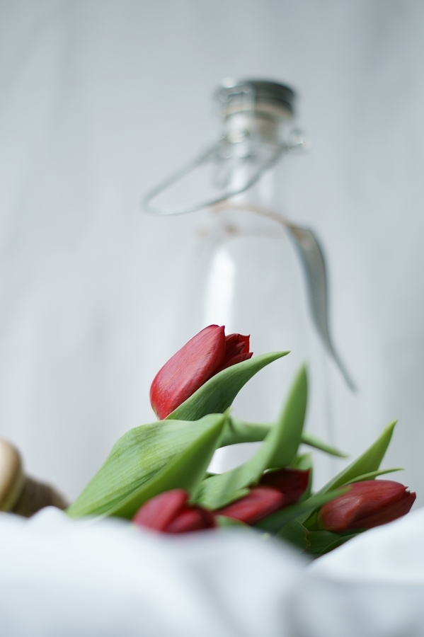 Blog + Fotografie by it's me! - Wohnen - rote Tulpen