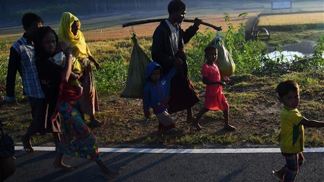Amnesty International concludes Myanmar treatment of Rohingya constitutes crime against humanity