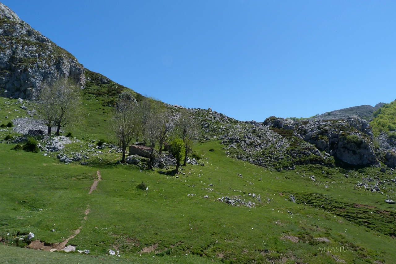 Majada Bricial - Lagos de Covadonga