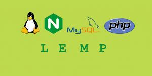 Instalasi LEMP (Nginx, MariaDB, PHP & phpMyAdmin) di Ubuntu 14.04