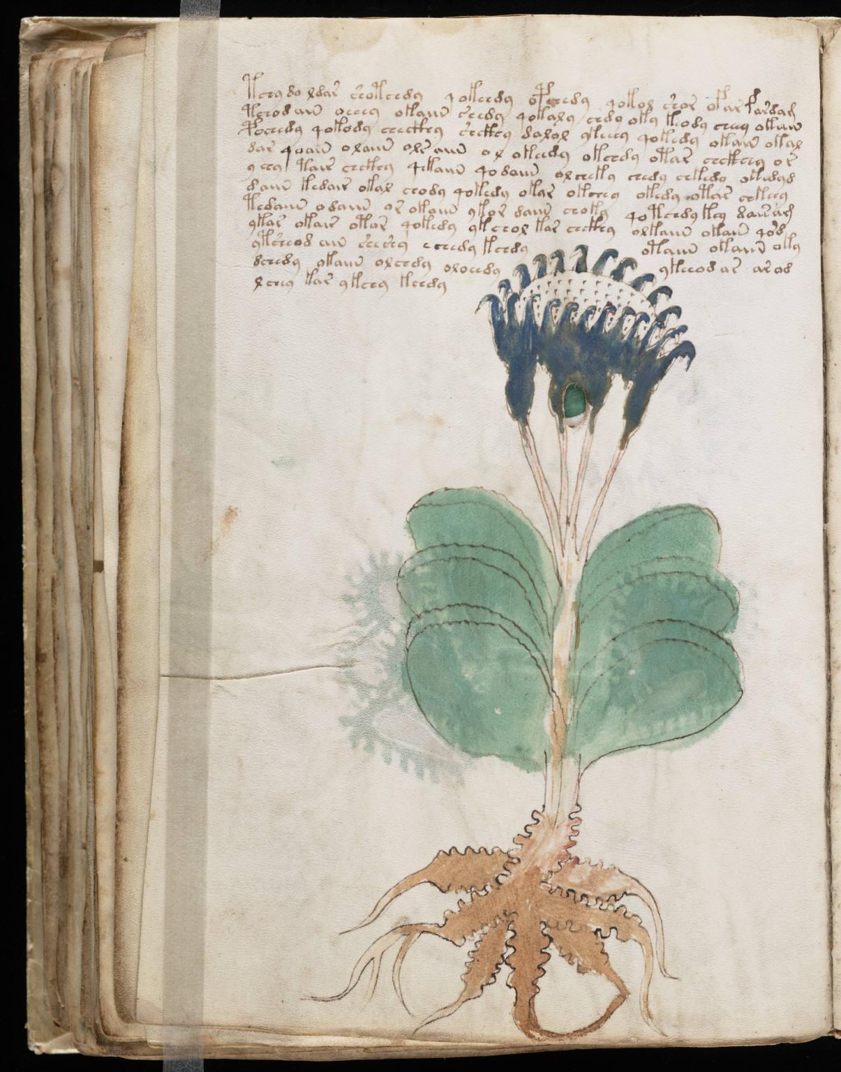manuscrito098