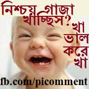 Images of Fb Comment Bangla - #rock-cafe