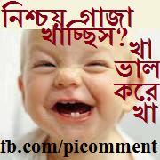 A Perfect Store Of Unlimited Facebook Photo Comments Banglaবল