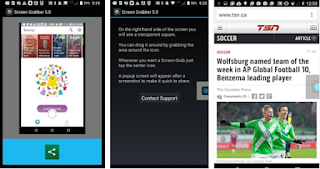 Screenshot - Screen Grabber