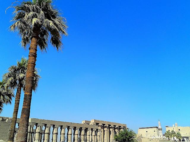 Fotos Egipto, Enero 2016 12