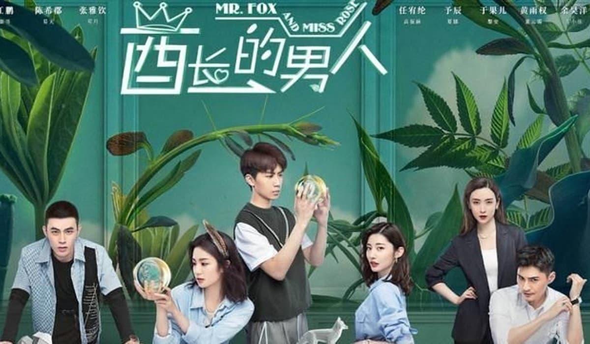 Download Drama China Mr. Fox and Miss Rose Sub Indo Batch