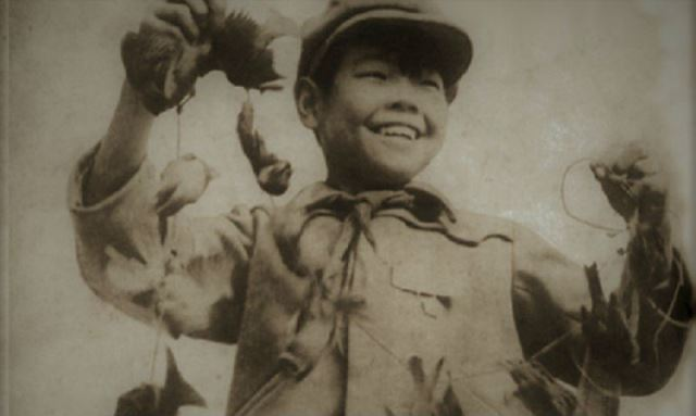 Así se vengó la naturaleza tras el genocidio de gorriones en China.