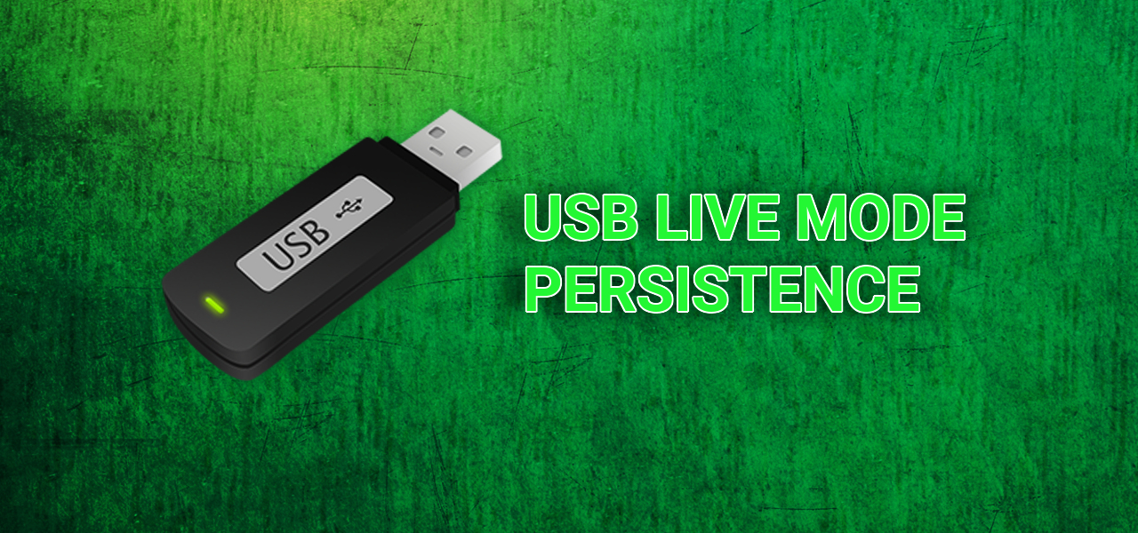 how to add persistence to kali linux usb
