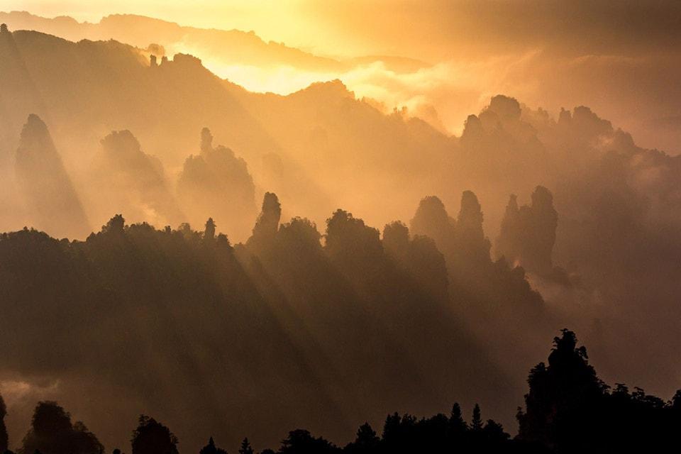Ngắm khung cảnh Trương Gia Giới qua những bức ảnh tuyệt đẹp