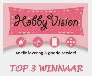 Top 3 at HobbyVision Design Team!