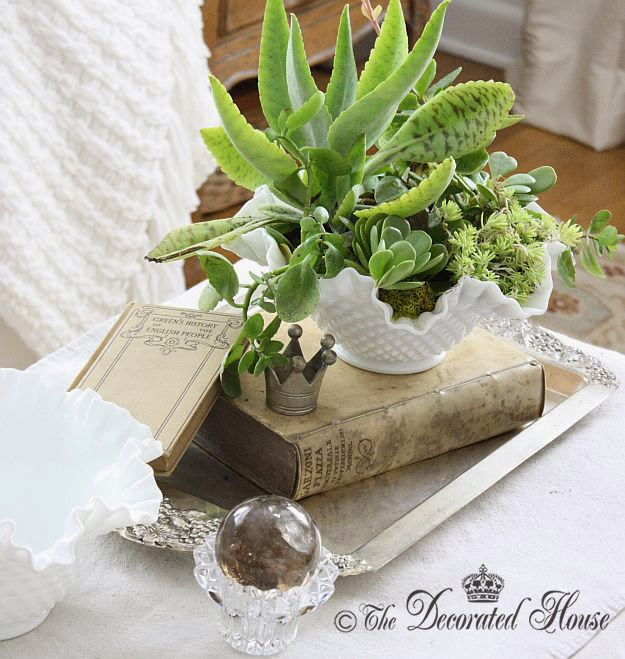 The Decorated House : Milk Glass & Succulents