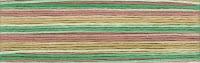 мулине Cosmo Seasons 8073, карта цветов мулине Cosmo