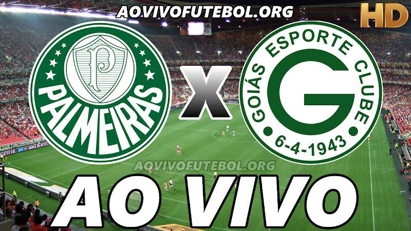 Palmeiras x Goiás Ao Vivo na TV HD