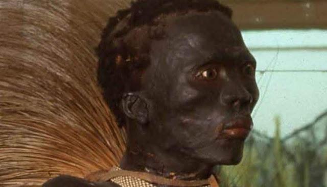 s53zw2africa - A cruel história do africano que foi dissecado e exposto como um animal em um museu na Europa