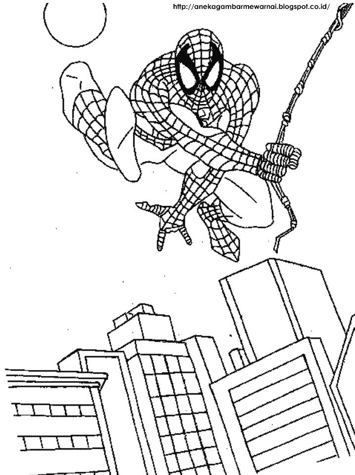 Gambar Mewarnai Spider Man Untuk Anak PAUD dan TK 4