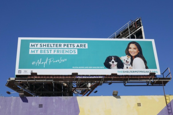 Olivia Munn Shelter Pet Project billboard