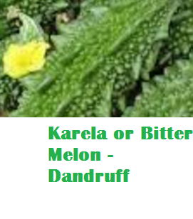Health Benefits Of Karela or Bitter Melon - Dandruff