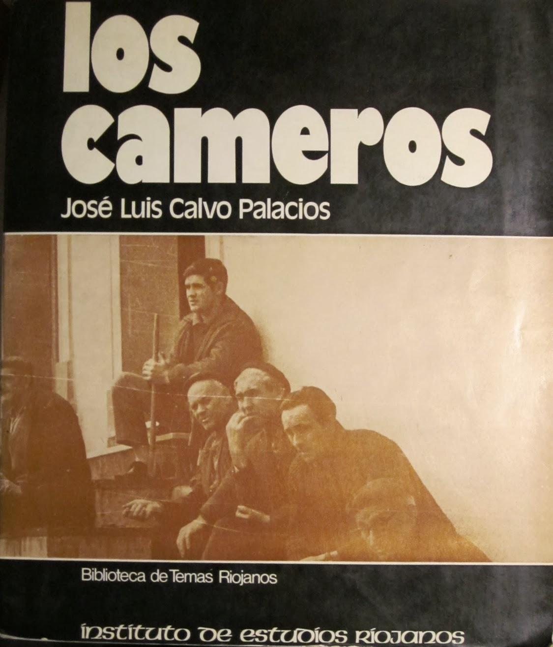 José Luis Calvo Palacios, Los Cameros. De región homogénea a espacio plan