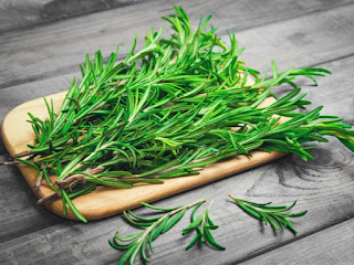 rosemary for body odor